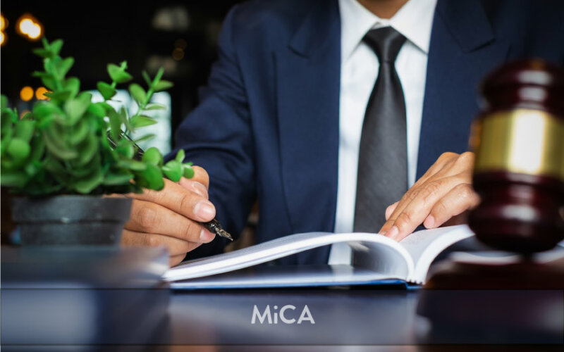 France anticipation of the MiCAR | PayTechLaw | itchaznong