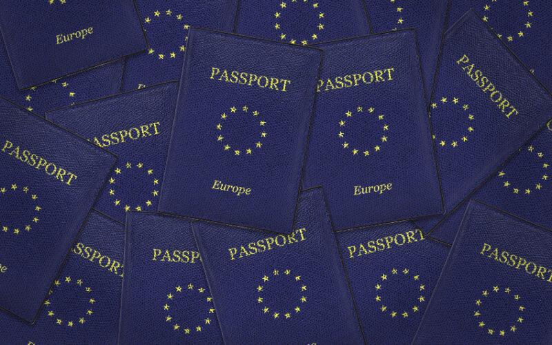Passporting   PayTechLaw   FinTech-Onlinekurs   FinTech online course   Pincio